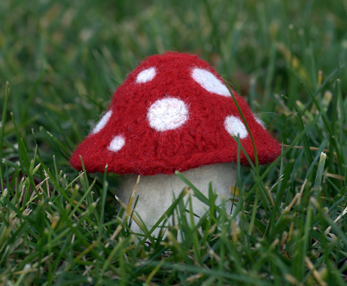 Felted knitted mushroom by kathrynivy.com