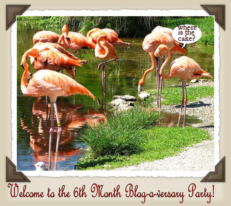 Flamingoparty