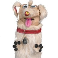 Dog_194