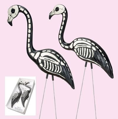 Ske_skel_a_flamingo_lg